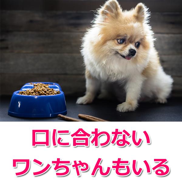ロイヤルカナンの評判・口コミ