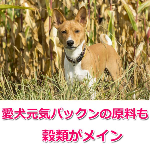 ソフトタイプ「愛犬元気パックン」