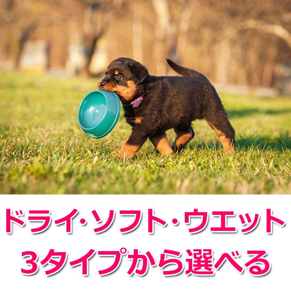 愛犬元気のラインナップ