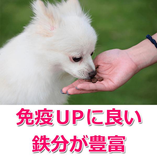 5.免疫力UP
