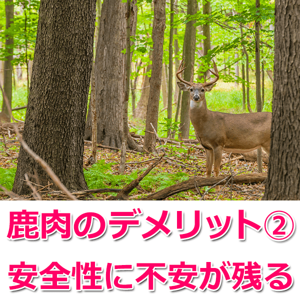 すべての鹿肉が安全ではない