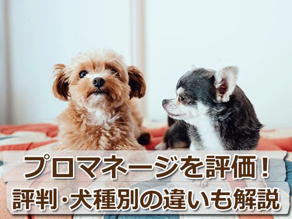 プロマネージを評価!原材料と評判や犬種別の違いについて