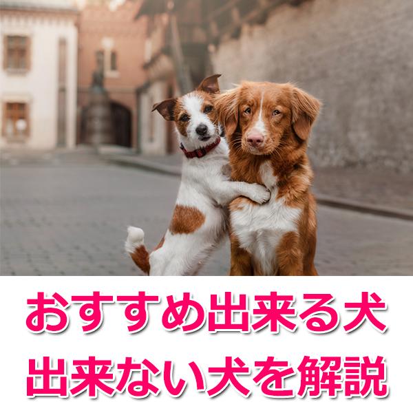 グリーンフィッシュをオススメできる犬・出来ない犬