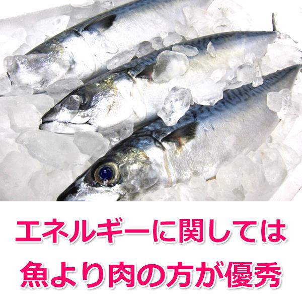 主原料が魚のメリットとは?