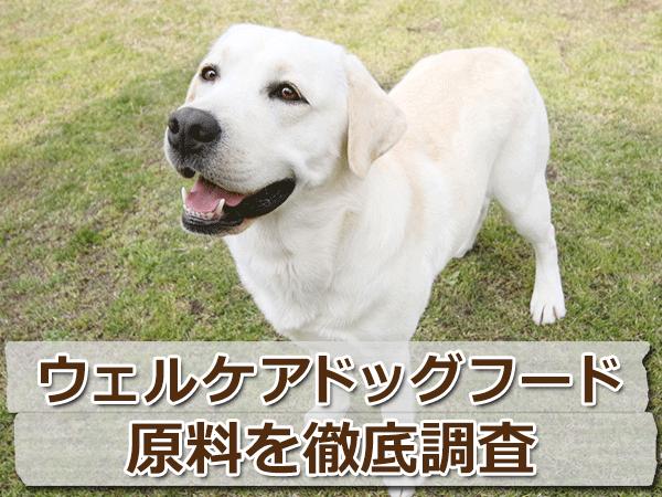 犬種別ドッグフード「ウェルケア」を評価