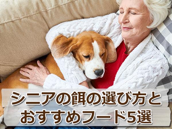 シニア(高齢犬)用ドッグフードの選び方とおすすめ5選