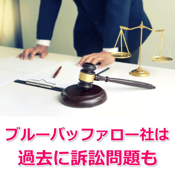 訴訟問題について