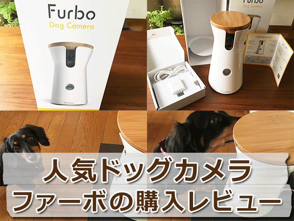 犬の留守番に!人気ドッグカメラ・ファーボ(Furbo)の購入レビュー
