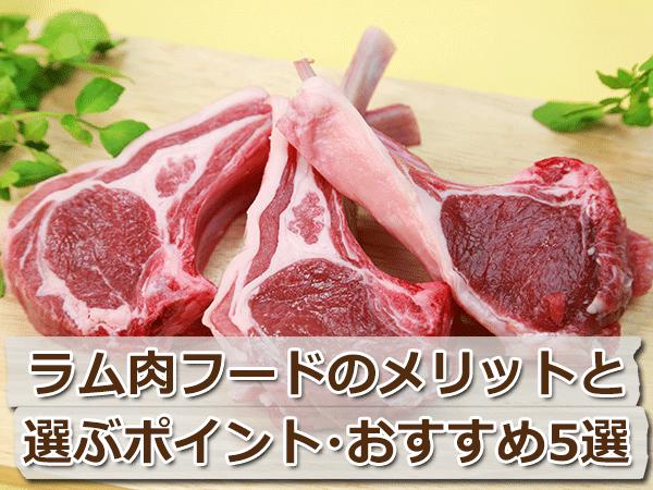 アレルギーにも!ラム肉のフードの選び方とおすすめ5選
