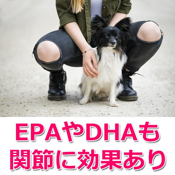 EPA・DHAも関節に良い